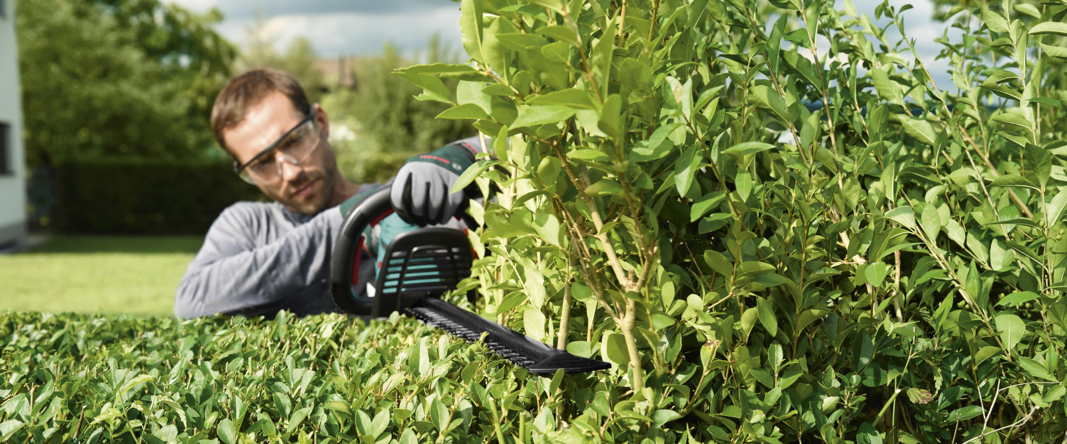 gartenfreuden ohne rückenschmerzen / profitipps für hobbygärtner, Garten dekoo