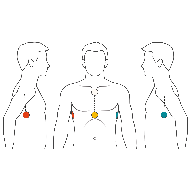 Studie Besttigt Krperhaltung Fr 4 Elektroden Ekg Cardiosecur