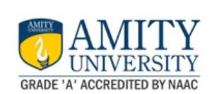 Amity Education Group