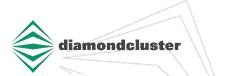 DiamondCluster International, Inc.