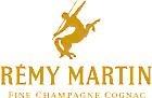 Dettling & Marmot AG