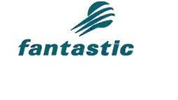 The Fantastic Corporation