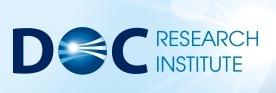 Dialogue of Civilizations Research Institute