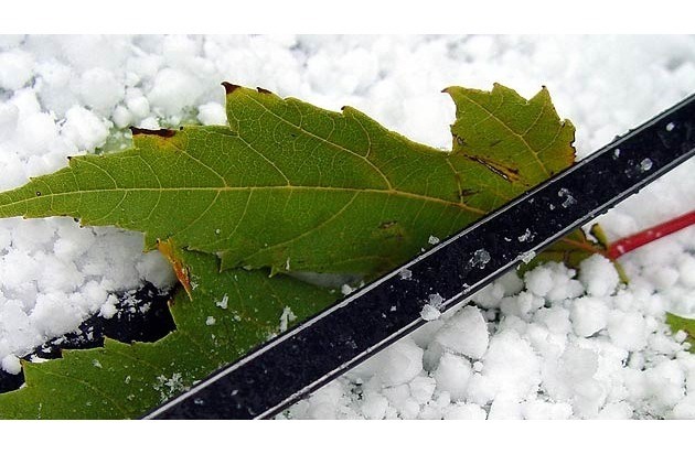 Allianz Suisse: Naturereigniskalender der Allianz Suisse: Die meisten Unwetter gibt es im Juli