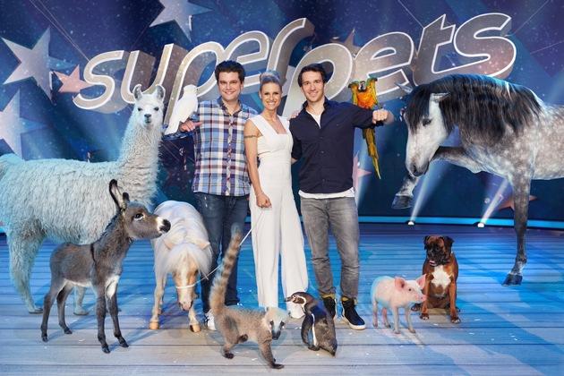 """Hakuna Matata in SAT.1: Michelle Hunziker, Felix Neureuther und Lutz van der Horst suchen in der neuen Prime-Time-Show """"Superpets"""" das talentierteste Haustier der Welt"""