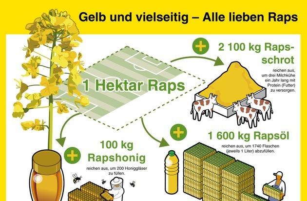 OVID, Verband der ölsaatenverarbeitenden Industrie in Deutschland e.V.: Raps ist vielseitig und macht glücklich