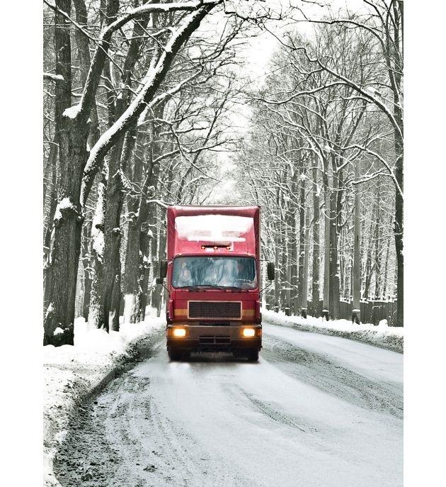 Kalt erwischt: Welche Versicherungen bei ungewöhnlichen Frost- und Schneeschäden einspringen