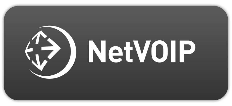 Netstream lanciert VoIP Produktepalette NetVoip