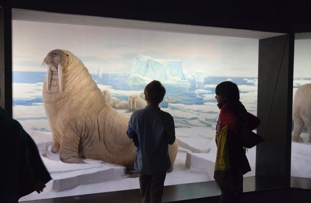 Museumsnacht Bern 2016: Museumsnacht im Anflug / 14. Museumsnacht Bern, 18. März 2016, 18 bis 02 Uhr
