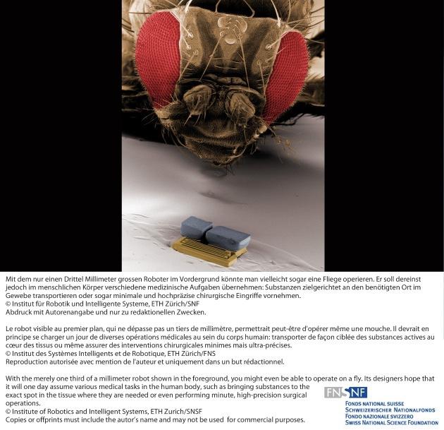 SNF: Bild der Forschung März 2011: Verbindung von Nano- und Magnetfeldtechnologie