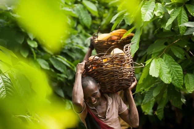 Augmentation de 30% de ventes de cacao Fairtrade en Suisse