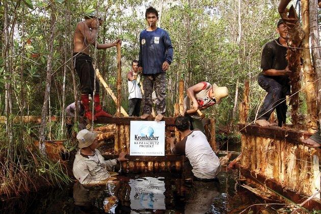 Krombacher Kronkorkenaktion: Bereits über 1 Mio. Euro für den Klimaschutz