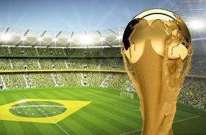 GDV - Gesamtverband der Deutschen Versicherungswirtschaft e.V.: Fußball-WM 2014: Ein Totalausfall kostet 650 Millionen Dollar