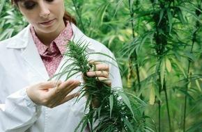 ABDA Bundesvgg. Dt. Apothekerverbände: Patienten bei Cannabis-Anwendung nicht im Stich lassen