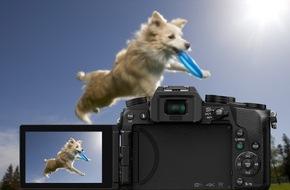 Panasonic Deutschland: LUMIX G70: ein tierisch gutes Fotovergnügen / Mit der 4K Foto-Funktion gelingen Bilder vom pelzigen Freund ganz einfach - selbst wenn der gerade durch die Wohnung flitzt