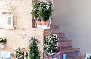 Blumenbüro: Duftende Blüten in Weiß sind Zimmerpflanzen des Monats März / Natürliche Duftgeber in puristischem Weiß: Gardenie, Jasmin und Stephanotis