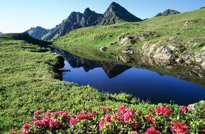 ALPBACHTAL SEENLAND Tourismus: Almrosentage: Farbenfest im Alpbachtal