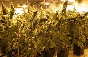 Polizeidirektion Bad Segeberg: POL-SE: Norderstedt / Sicherstellung einer Cannabisindoorplantage
