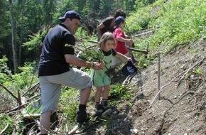 Emmi Schweiz AG: Emmi pflanzte Schutzwald am Stanserhorn