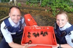 Polizeipräsidium Koblenz: POL-PPKO: ++Rettungseinsatz der besonderen Art in Betzdorf++