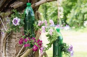 Blumenbüro: Mit Petunien, Verbena und Schneeflockenblumen die Sonne begrüßen - Drei Gestaltungsideen für einen kreativen Garten