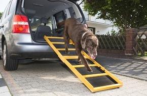 Bundesverband für Tiergesundheit e.V.: Hunde werden immer älter / Vorsorgeuntersuchungen helfen, Krankheiten rechtzeitig zu erkennen