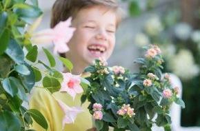 Blumenbüro: Fröhliche Gartenblüher für einen unvergesslichen Sommer im Freien / Ein sommerlicher Mix aus Gelb und Rosa