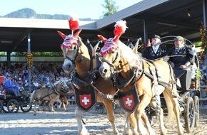 Haflinger Pferdezuchtverband Tirol: 7 Haflingergespanne auf abenteuerlicher Wanderfahrt durch die Alpen