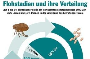 Bundesverband für Tiergesundheit e.V.: Flöhe machen keinen Urlaub / Von der Sommerfrische direkt ins Winterquartier