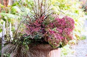 Blumenbüro: Kreativer Garten im Winter / Trending in the Garden - Draußen in der kalten Jahreszeit