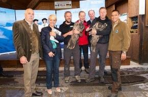 Nationalpark Hohe Tauern und Tiroler Naturparks: Seit über 20 Jahren wird der größte Greifvogel Europas, der Bartgeier, wieder in den Alpen angesiedelt
