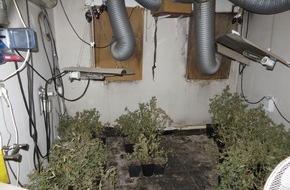 Polizeipräsidium Frankfurt am Main: POL-F: 150709 - 517 Eckenheim: Indoor-Plantage gefunden