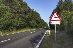 CosmosDirekt: Achtung Wildwechsel: Welche Versicherung bei Unfällen mit Tieren hilft (FOTO)