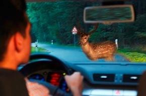 HUK-Coburg: Mit Hirschen und Rehen muss gerechnet werden / Wer durch Waldstücke fährt, muss Geschwindigkeit anpassen und vorsichtig fahren