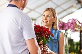 toom Baumarkt GmbH: Nachhaltigere Vorweihnachtszeit / toom hat erstmalig Weihnachtssterne mit Fairtrade-Siegel und PRO PLANET-Label im Sortiment
