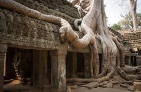 ZDFneo: Das größte Wunder des Mittelalters / ZDFneo-Dokumentation über die kambodschanische Tempelanlage Angkor Wat