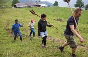 Caritas Schweiz / Caritas Suisse: Caritas-Bergeinsatz sucht 800 Freiwillige für Sommermonate /  Schweizer Bergbauern benötigen Hilfe von Freiwilligen