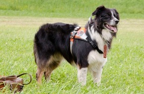REDOG (Schweizerischer Verein Such- und Rettungshunde): 27. April 2014: Internationaler Tag des Rettungshundes