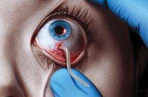 """Sky Deutschland: Ein Vampirvirus bedroht die Menschheit: Sky startet die Horrorserie """"The Strain"""" ab 12. Februar"""
