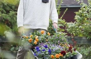 Blumenbüro: Materialmix mit unterschiedlichen Veilchenarten / Stimmungsvoll im Herbst dank Stiefmütterchen & Co.