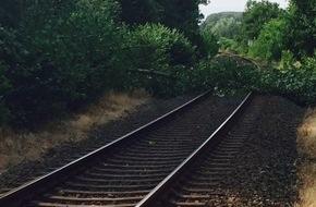 Freiwillige Feuerwehr Bedburg-Hau: FW-KLE: Umgestürzter Baum blockiert Bahngleise