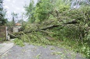 DVAG Deutsche Vermögensberatung AG: Gut abgesichert für stürmische Zeiten / Die DVAG erklärt, welche Versicherungen Hausbesitzer umfassend vor Folgekosten durch Sturm, Hochwasser und Co. schützen