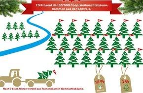Coop Genossenschaft: 7 von 10 Weihnachtsbäumen stammen aus der Schweiz / Taten statt Worte Nr. 300: Coop setzt auf einheimische Weihnachtsbäume
