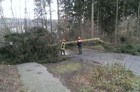 Feuerwehr Arnsberg: FW-AR: Arnsberger Feuerwehr rückt zu zahlreichen Sturmeinsätzen aus