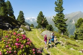 Innsbruck Tourismus: Berghänge in Pink: Die Almrosenblüte im Kühtai/Sellraintal bei einer Ferienwoche (21.-27.6.14) erleben