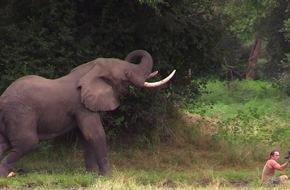 kabel eins: Wenn er jetzt angreift, ist es vorbei! Abenteurer Richard Gress entgeht nur knapp einer Elefanten-Attacke / Die Wildnis und ich - Die Abenteuer des Richard Gress, am 13. Januar 2015 bei kabel eins (FOTO)