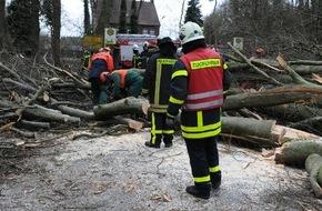 """Feuerwehr Dorsten: FW-RE: Sturmtief """"Niklas"""" sorgte für 28 Einsätze im Stadtgebiet"""