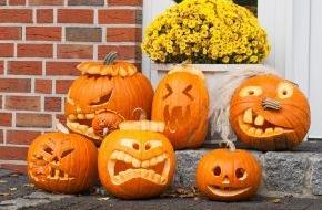 """LBS West: Wenn aus Streichen Streit wird / LBS-Rechtsexpertin Agnes Freise: """"An Halloween ist nicht alles erlaubt, was vermeintlich Spaß macht."""""""