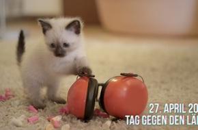 BG ETEM - Berufsgenossenschaft Energie Textil Elektro Medienerzeugnisse: Katzenvideo wirbt für Lärmschutz / Tag gegen Lärm am 27. April 2016