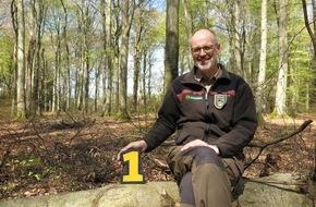 SWR - Südwestrundfunk: Der mit dem Wald spricht: Peter Wohlleben bei SWR1 / Naturexperte gibt Einblicke in sein Leben / Ab 14. Mai jeden Samstagvormittag bei SWR1 Rheinland-Pfalz